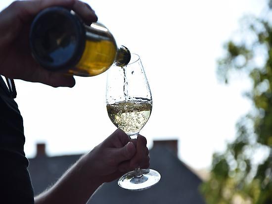 Tasting of wine and cavas