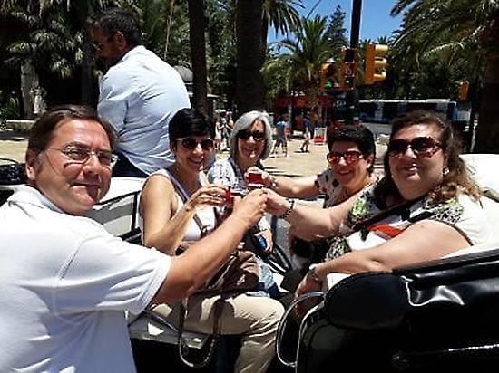Paseo en Coche de Caballos Malaga