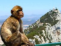 Gibraltar Trip from Malaga.